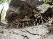 Rock at Mae Sa Waterfall in Thailand — Stock Photo