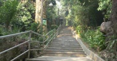 Wat Tham Pha Plong trappa — Stockvideo