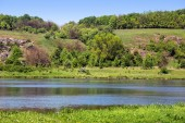 Landscape of a green grassy hills, trees, river and sky  — Stock Photo