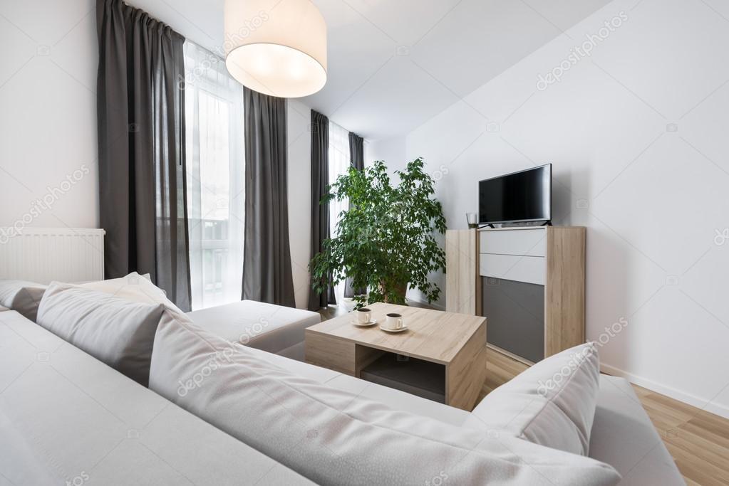 Modern interieur woonkamer for Interieur woonkamer modern