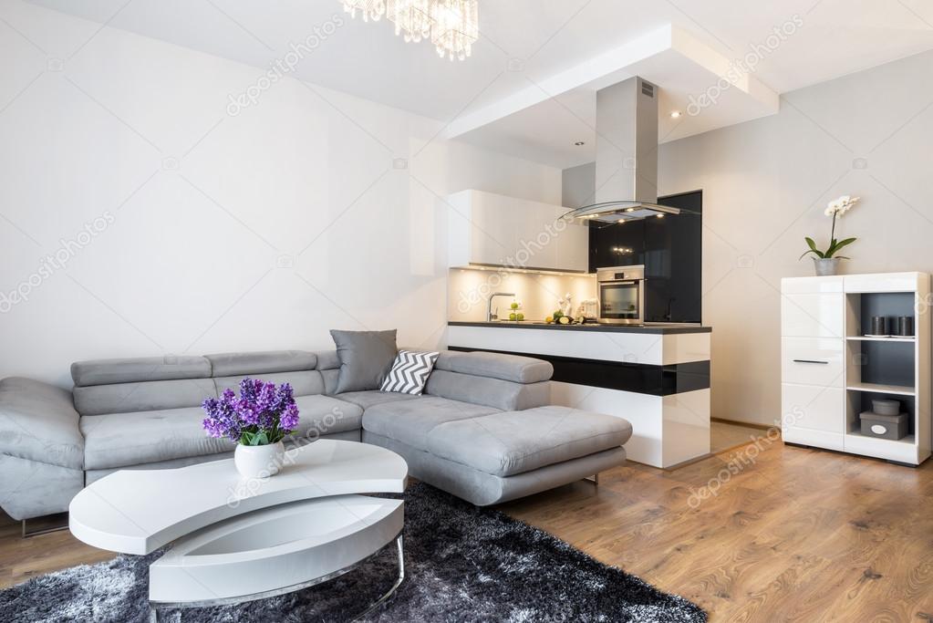 Luxurry woonkamer met keukenhoek — stockfoto © jacek kadaj #68885241