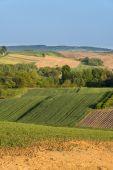 ポーランドの田舎の風景 — ストック写真