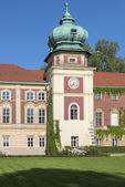 Tower of Lancut castle , Poland — Stock Photo