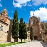 Постер, плакат: New Cathedral of Salamanca Spain
