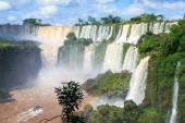 Iguazu falls on the border of Argentina and Brazil — Stock Photo