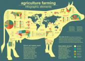 Agriculture, animal husbandry infographics, Vector illustrations — Vecteur