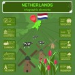 Netherlands infographics, statistical data, sights. — Vetor de Stock  #57448417