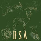 RSA  landmarks. Retro styled image — Stock Vector