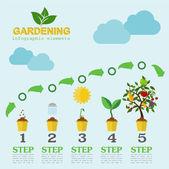 Garden work infographic elements. Working tools set — Stock Vector