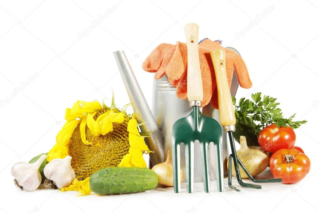 Planting Plant Gardening Tools On Image amp Photo  Bigstock