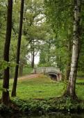 Blick auf eine alte Brücke zwischen Bäumen im Schlosspark — Stockfoto