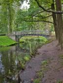 Ponte velha sobre o fluxo no parque do palácio de gatchina — Foto Stock