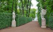 Ancient statues in the Summer Gardens park in Saint-Petersburg, — Stock Photo
