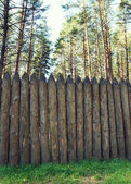 High wooden stockade made of logs in a forest — Stock Photo