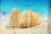 Grunge winter background with birch trees, vintage paper texture — Stock Photo