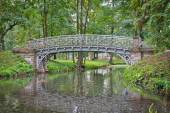 Old bridge over water in the palace park in Gatchina — 图库照片