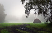 Beautiful summer landscape in foggy morning with haystack on a glade — Stock Photo