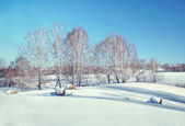 Beautiful sunny winter landscape with rolls of hay on the white snowy field — Stock Photo