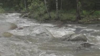 Stormy mountain river running over rocks — Stock Video