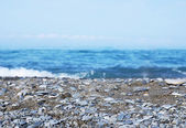 Soft crashing of waves on a pebble beach. Focus on foreground — Stock Photo
