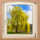 Window framing a spring scenery — Stock Photo