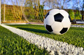 Soccer ball behind the goal line — Stock Photo