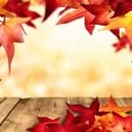 Natural autumnal frame — Stock Photo #54758925