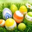 Easter eggs and flowers on grass — Stock Photo #66890103