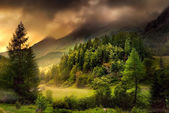 Valley in dramatic mood — Stock Photo