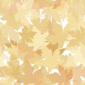 Autumn seamless background — Stock Vector