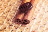Coffee bean on cinnamon stick — Stok fotoğraf