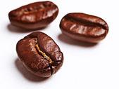 Tres granos de café — Foto de Stock