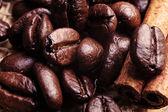 Kahve çekirdekleri ve kabuk tarçın — Stok fotoğraf