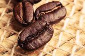 Drie koffie bonen — Stockfoto