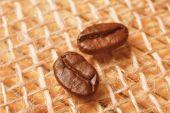 Two coffee grains — Stock Photo
