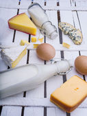 Different kinds of cheese and milk — Stock Photo