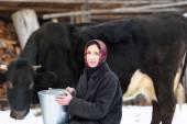 Farmer woman milking a cow in winter yard — Stock Photo