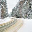 Winter road in snowy forest — Stock Photo #64658661