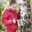 Little girl collects birch sap in woods — Stock Photo #70300903