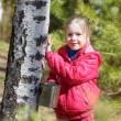 Little girl collects birch sap in woods — Stock Photo #70300909