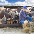 Male rancher in a farm  — Stock Photo #74896023