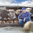 Male rancher in a farm  — Stock Photo #74896651
