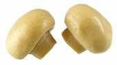 Conserved mushrooms — Stock Photo
