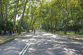 Central park streets — Stock Photo