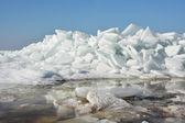 Hummock on the frozen sea shore — Stock Photo