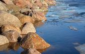 Frozen sea shore — Stock Photo