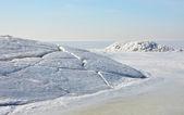 Polar landskap — Stockfoto