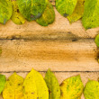 Texture autumn Period of yellow leaves and wood — Stock Photo #63592853