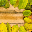 Texture autumn Period of yellow leaves and wood — Stock Photo #63592955
