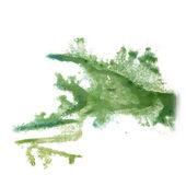 抽象光绿色手绘水彩污点侮辱罗夏 — 图库照片